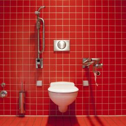 Toilet In Red Bathroom