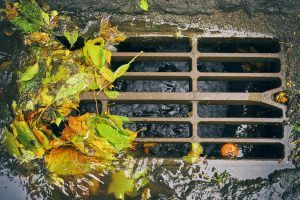 Maintaining Drains